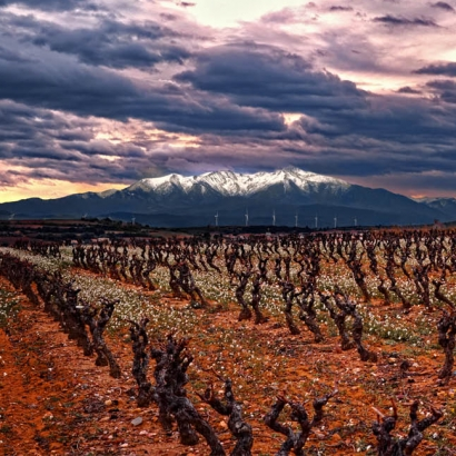Canigou Roussillon South of France