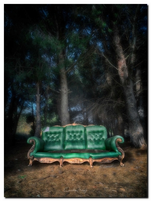 Take a Seat project 24 - Sous les arbres -